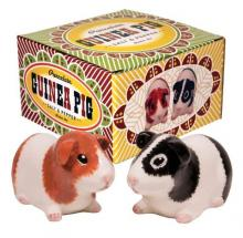 Porcelain Guinea Pig Salt & Pepper Shaker Set